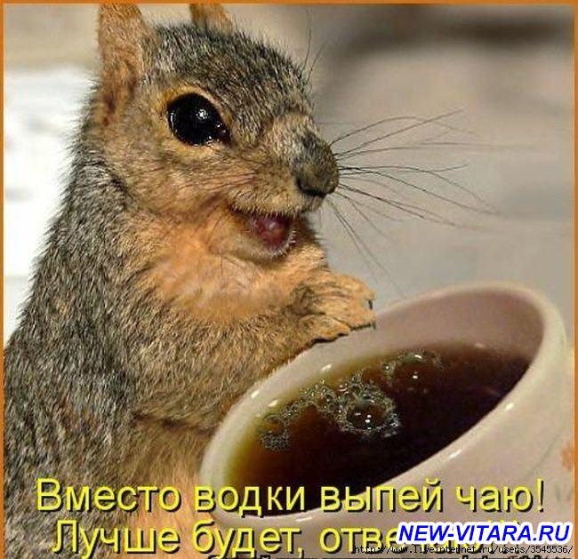 Антиалкогольная кампания - uPBtKvi2RDE.jpg