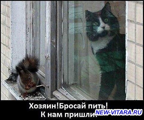 Антиалкогольная кампания - i (6).jpg