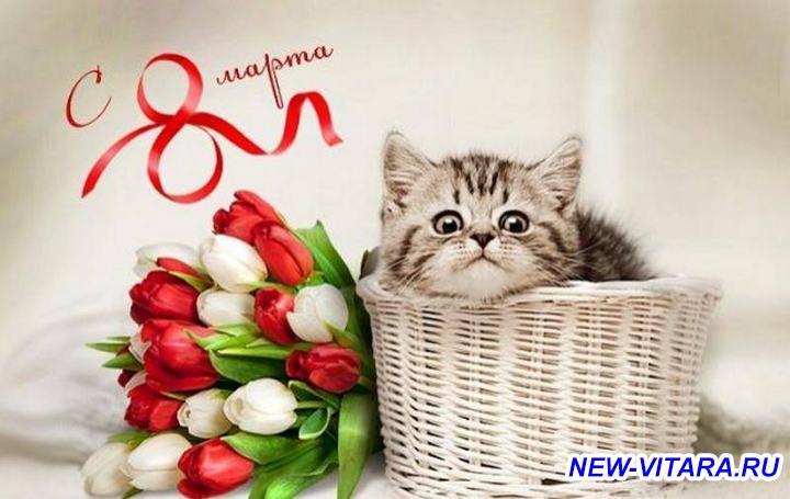 С 8 марта С праздником весны  - 43a2cca97665d1bce01fac124052b36d.jpg
