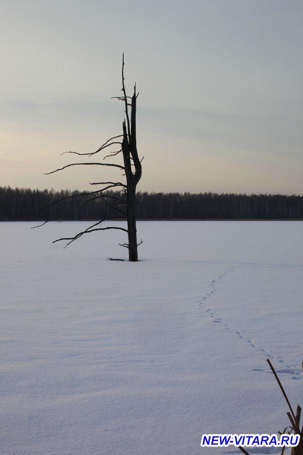 АЛКИС ассоциация любителей костра и солнца Охотники и рыболовы, все сюда  - 7_1.jpg
